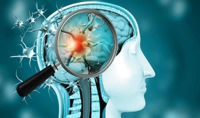 COVID-19: novas pesquisas investigam impacto do vírus no cérebro