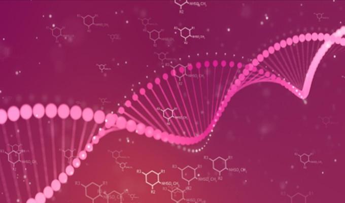 Câncer de mama hereditário: como prevenir?